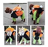 ZCNNO Funny Pet Dog Cat Halloween Dog Pumpkin Clothing,Carrying Pumpkin Costume Fancy Puppy Apparel Jacket,Pet Costume Dog Cat Pets Suit Christmas Halloween Costumes Pets Clothing for Dogs and Cats