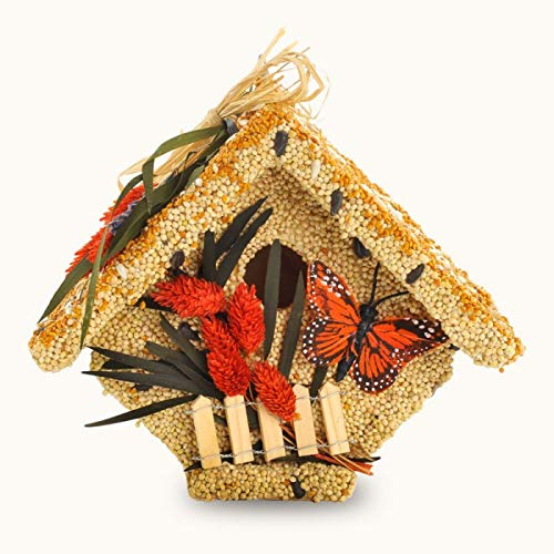 (Mr. Bird All Season Wren Casita Wild Bird Seed Birdhouse 1.5 lbs.)