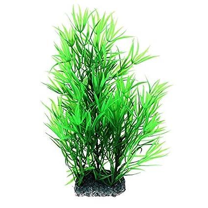 Amazon.com : eDealMax Fish Tank decoración Planta de agua Artificial Aquascaping 30cm Alto Verde : Pet Supplies