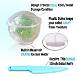 Lettuce Crisper Salad Keeper Container Keeps your Salads and Vegetables Crisp and Fresh - This Second Generation Storage Container Comes with a Tighter Lid and a Bonus Lettuce Knife