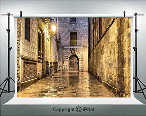 Gothic Photography Backdrops Dark Stone Ancient Street Spain European Horror Dark Evil Renaissance Medieval Art Photo,Birthday Party Background Customized Microfiber Photo Studio Props,8x8ft,Beige