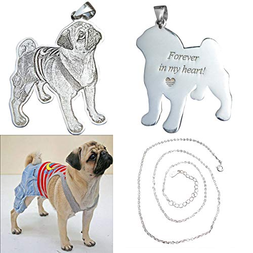 JINHUANSHOW Personalized Pet Photo Necklace Pendant Silver Chain Custom Handmade Gift ()