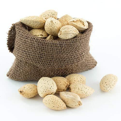Great Companions In Shell Almonds Bird Treat 5 lbs