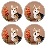 MSD Round Coasters Welsh Corgi Pembroke dog Image 33648527 by MSD Customized Tablemats Stain Resistance Collector Kit Kitchen Table Top DeskDrink Customized Stain Resistance Collector Kit Kitchen Tab