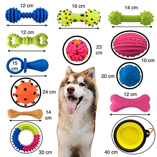 Plush Dog Toy Rubber (ZULOXA 12+1 Dog Toys Pack Set Plus Gym Sack Durable Variety chew Tough Ball Plush Bone Squeaky Rubber Aggressive Best Gift Little Pets Play for Small and Medium Dogs and Puppy)