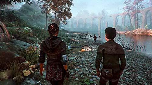 A Plague Tale: Innocence for Xbox One [USA]: Amazon.es: Maximum Games LLC: Cine y Series TV