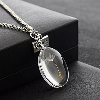 Amazon angelamax real dandelion seed pendant necklace glass angelamax real dandelion seed pendant necklace glass oval globe make a wish diy nature seeds pendant mozeypictures Images
