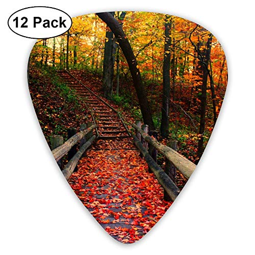 12-Pack Fashion Classic Electric Guitar Picks Plectrums Autumn Forest Road Instrument Standard Bass -