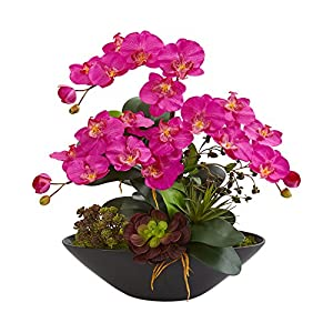 Nearly Natural 1605-DP Phalaenopsis Orchid and Mixed Succulent Garden Artificial Black Vase Silk Arrangements Dark Pink 51