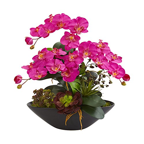 Nearly Natural 1605-DP Phalaenopsis Orchid and Mixed Succulent Garden Artificial Black Vase Silk Arrangements, Dark Pink