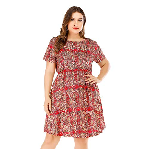 (New in Respctful✿Women's Short Sleeve V-Neck Floral Leopard Print Tunic Pleated Dress Ladies Plus Size Beach Dress Red)