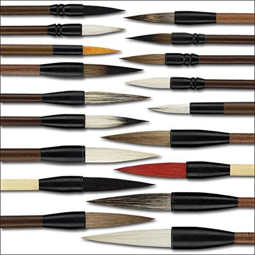 Golden Panda Master Quality Chinese Calligraphy Paint Brush Set 18 Master Quality Chinese Calligraphy Brushes - [Set of 18] by Golden Panda (Image #1)
