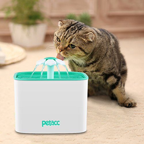Pet Fountain Cat Dog Water Dispenser with Pump and 4 Replacement Filters - Healthy and Hygienic 2L Super Quiet Automatic Electric Water Bowl, Drinking Fountain for Dogs, Cats, Birds and Small Animals by Petacc (Image #7)
