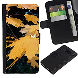 iKiki Tech / Cartera Funda Carcasa - Fall Autumn Yellow Rain Tree Nature - Samsung Galaxy S6 SM-G920