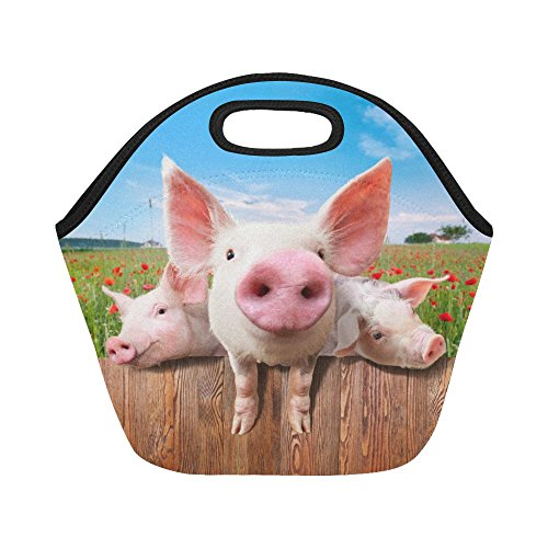 Pig Floral (InterestPrint Cute Pig Animal Reusable Insulated Neoprene Lunch Tote Bag Cooler 11.93