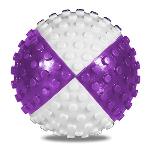 Tough Chew Ball for Dogs, ATESSON Tooth Cleaning Toy Non-Toxic Rubber Bite Resistant, Purple and White, 2.5 Inch
