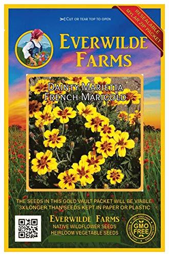 Everwilde Farms - 500 Dainty Marietta French Marigold Wildflower Seeds - Gold Vault Jumbo Seed Packet
