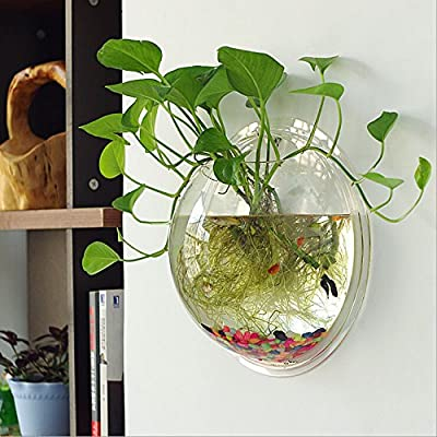 Tomixxx Creative Acrylic Hanging Wall Mount Fish Tank Bowl Vase Aquarium Plant Pot Bowl Bubble Aquarium