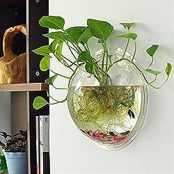Tomixxx Creative Acrylic Hanging Wall Mount Fish Tank Bowl Vase Aquarium Plant Pot Bowl Bubble Aquarium-B