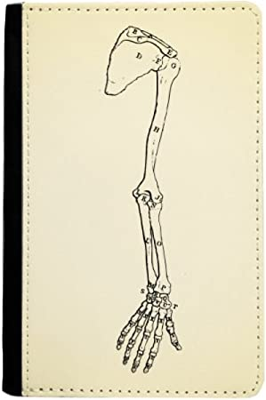 Huesos Humanos Dibujos