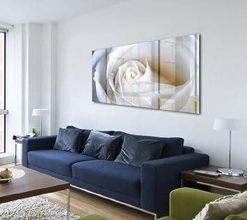 Acrylglasbild Blume   Wandbild Hinter Acrylglas  Acrylglas Bild  Rose Weiß  P0271 AGP 100x50