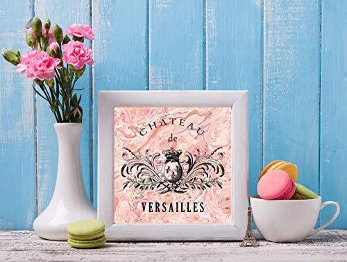 Marble Versailles - Pink Marble Chateau de Versailles Canvas Print