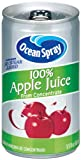Ocean Spray 100% Apple Juice,  5.5 Ounce Mini Cans (Pack of 48)