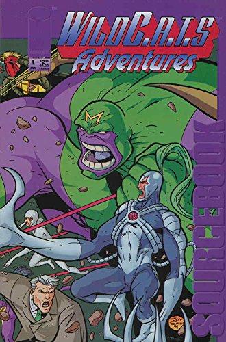 Adventure Source Book - WildC.A.T.S Adventures Sourcebook #1 FN ; Image comic book