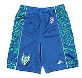 Minnesota Lynx WNBA Womens Team Color Replica Basketball Shorts, Blue