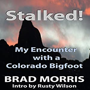 Stalked! Audiobook