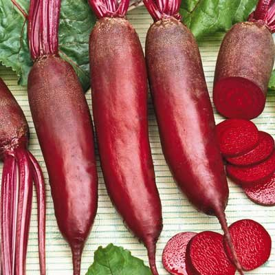 """Seeds and Things Beet Seeds """"Cylindra"""" 200+ Seeds the Sweetest Beet You'll Ever Eat!"""