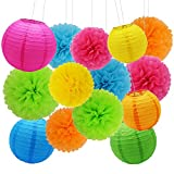 SOOKOO 20Pcs 14 Inch, 12 Inch, 10 Inch Assorted Rainbow Color Paper Pom Poms and 10 Inch, 8 Inch, 6 Inch Paper Lanterns for Birthday Wedding Party Baby Shower Decorations