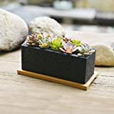 Nattol 8.5 inch Pot Rectangle Planter with Tray, Cement Pot Planter/Succulent Black Pot/Mini Cactus Holder with a Removable Bamboo Saucer Tray (Black)…