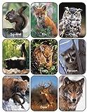 Eureka Wildlife Animals Stickers, 36 Stickers