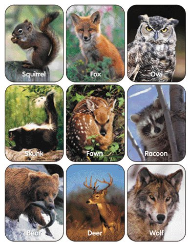 Paper Magic 650017 Eureka Wildlife Animals Stickers Paper Magic Group Inc.