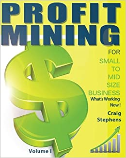Book Profit Mining for Small to Midsize Business Volume 1: What's Working Now!