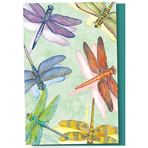 Tree-Free Greetings EcoNotes 12 Count Dragonflies All Occasion Notecard Set with Envelopes, 4 x 6 Inches - Blue Dragonfly Note