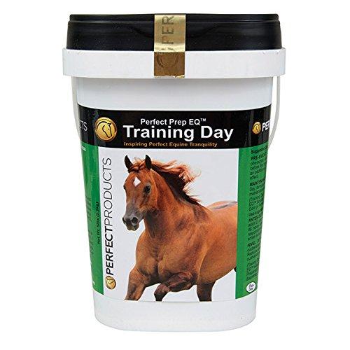 Perfect Prep EQ Training Day - 5 pound