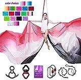 Aerial Silks Deluxe Equipment Set for Aerial Yoga, Aerial Yoga Hammock, Aerial Acrobatic,Circus Arts, Aerial Dance(L:10m W:2.8m (Gradual Change White)