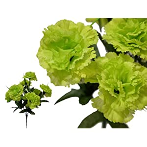 BalsaCircle 84 Large Silk Carnations Flowers - 12 Bushes - Artificial Flowers Wedding Party Centerpieces Arrangements Bouquets Supplies 21
