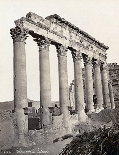 Collection Palmyra (Posterazzi Poster Print Collection Ruins of a Colonnade At Palmyra, Syria. Photograph, Late 19Th Century, (18 x 24), Varies)