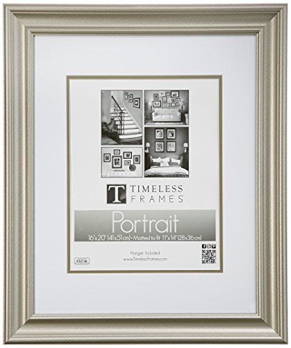 Timeless Frames Lauren Portrait Wall Photo Frame, 16 by 20-Inch, Silver