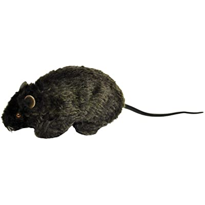 Forum Novelties Real Looking Fake Rat Prop for Halloween: Toys & Games