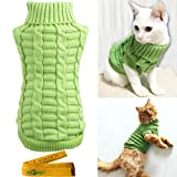 Top 10 Best Cat Jacket