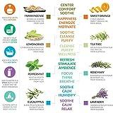 Artnaturals Therapeutic-Grade Aromatherapy