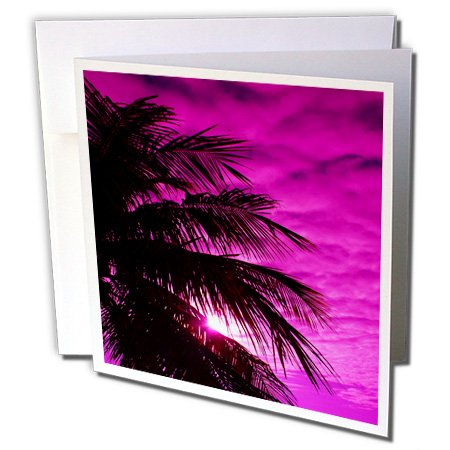 - 3dRose image of fuchsia sky over silhouette palm tree - Greeting Cards, 6 x 6 inches, set of 6 (gc_174386_1)