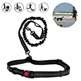 6FT Dog Running Leash - Heavy Duty Retractable Dog Leash Tough Bungee Rope Reflective Leashes with Dual Handles for Small Medium Large Dogs 1 or 2 Dog Leash