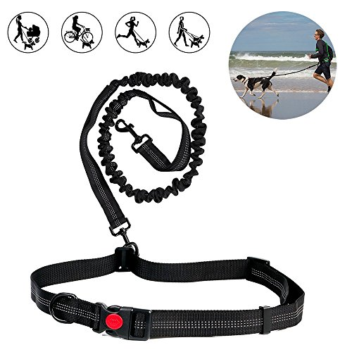 6FT Dog Running Leash - Heavy Duty Retractable Dog Leash Tough Bungee Rope Reflective Leashes with Dual Handles for Small Medium Large Dogs 1 or 2 Dog Leash by DAPTSY
