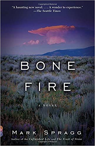 Book Bone Fire: A novel