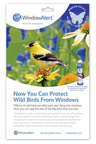 Window Alert Butterfly Decals - Decals Alert